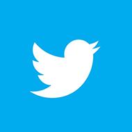 bizzadvice-twitter-icoon